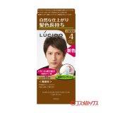 ルシード(LUCIDO) ワンプッシュケアカラー ライトブラウン 白髪用 無香料 マンダム(mandom)