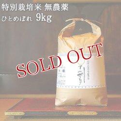 画像1: 大分県竹田市産 ひとめぼれ 特別栽培米【無農薬】「てん米もり」9kg たなべ農園【送料無料】