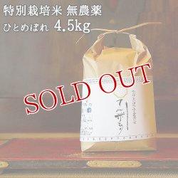 画像1: 大分県竹田市産 ひとめぼれ 特別栽培米【無農薬】「てん米もり」4.5kg たなべ農園【送料無料】