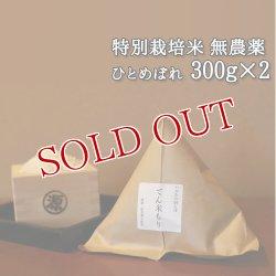 画像1: 大分県竹田市産 ひとめぼれ 特別栽培米【無農薬】「てん米もり」300g×2 たなべ農園【送料無料】