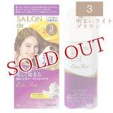 ダリヤ サロンドプロ 泡のヘアカラー エクストラリッチ(白髪用) 3 明るいライトブラウン SALON de PRO DARIYA