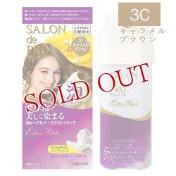 画像1: ダリヤ サロンドプロ 泡のヘアカラー エクストラリッチ(白髪用) 3C キャラメルブラウン SALON de PRO DARIYA